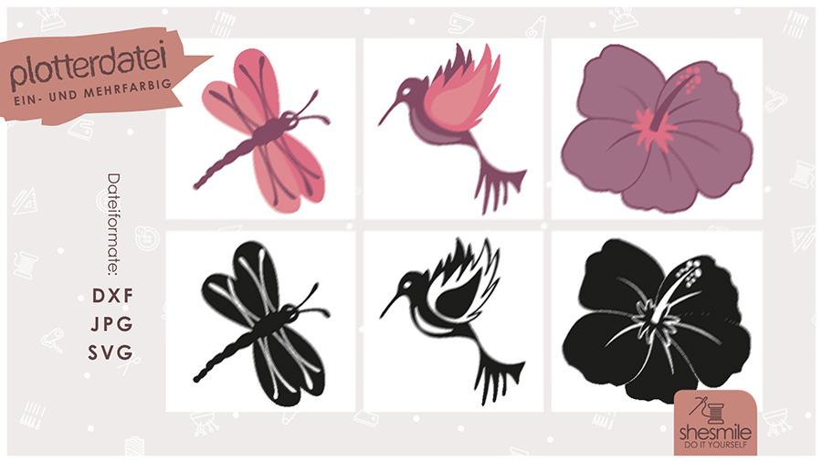 Hibiskus, Libelle und Kolibri (Plotterdatei und Illustration)